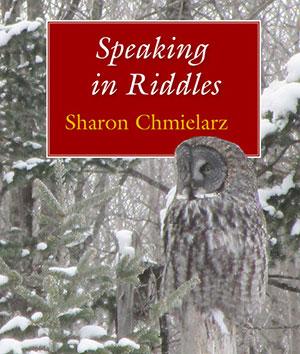 Speaking in Riddles